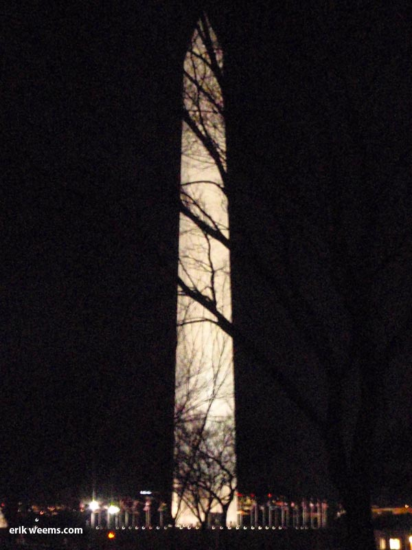 Washington Monument at night tree shrouded