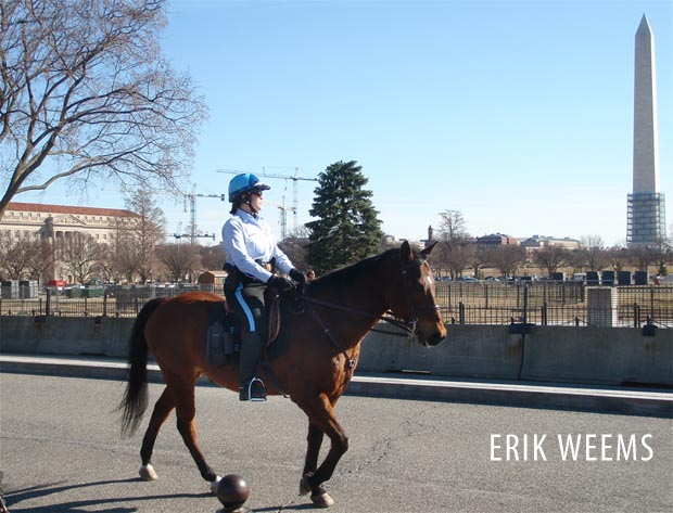 Horse mounted White House Police - Washington DC