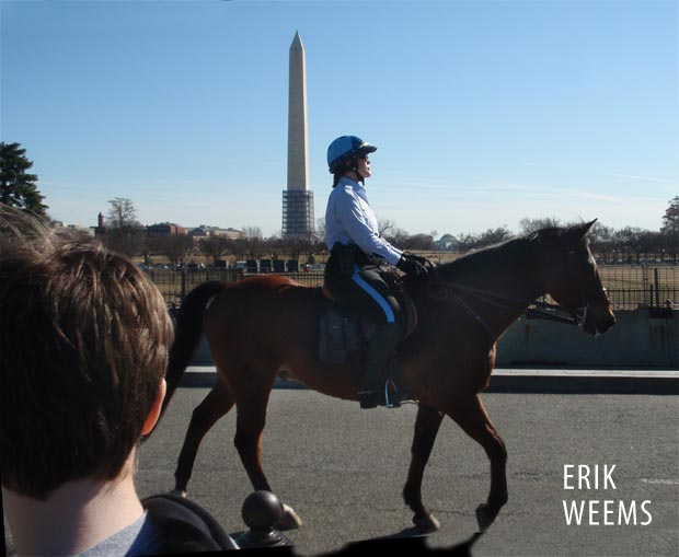 Mounted Horse Police atthe White House in Washington DC