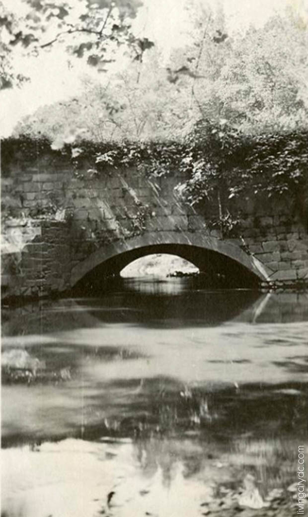 Rock Creek Parkway 1919 - Photo by Martin Gruber